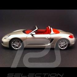 Porsche Boxster S 981 2012 grau 1/18 Minichamps 110062030
