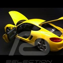 Porsche Cayman 2013 gelb 1/18 Minichamps 110062220
