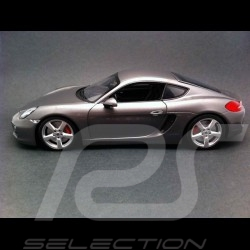 Porsche Cayman S 981 gris 2013 1/18 Minichamps WAP0210070D