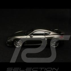 Porsche Cayman GT4 gris agate grey métallisé achatgrau metallic 1/43 Minichamps CA04316078