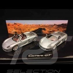 Set Porsche Carrera GT mit and ohne abnehmbarem Dach GT Silbergrau metallic 1/43 Minichamps WAP02010314