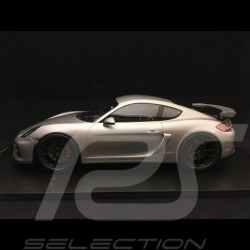 Porsche Cayman GT4 type 9812016 metallic grey 1/18 Spark 18S298