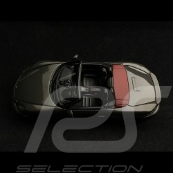 Porsche 718 Boxster GTS type 982 2018 gris quartz 1/43 Spark S7619 grey grau