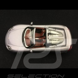 Porsche Carrera GT Seal grey 2003 1/43 Minichamps 400062630