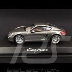 Porsche Cayman 981 2013 gris 1/43 Norev WAP0200300D