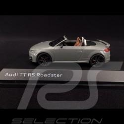 Audi TT RS Roadster 2016 gris Nardo 1/43 iScale 5011610531 Nardo grey Nardograu