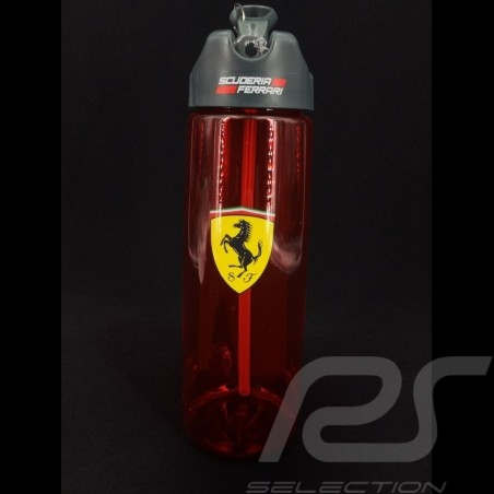 Sport Kürbis Ferrari rot