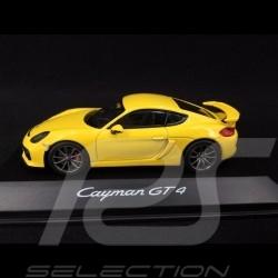 Porsche Cayman GT4 racing gelb 1/43 Schuco WAP0204020F