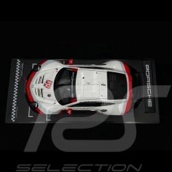 Porsche 911 RSR type 991 n° 912 24H Daytona 2018 1/18 IXO LEGT18002